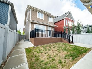 Photo 50: 5215 ADMIRAL WALTER HOSE Street in Edmonton: Zone 27 House for sale : MLS®# E4260055