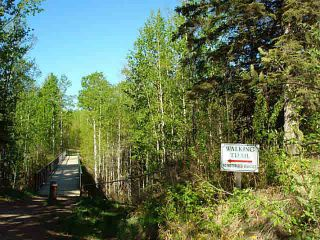 Photo 9: 41 Heron Point Cl: Rural Wetaskiwin County Rural Land/Vacant Lot for sale : MLS®# E4233949