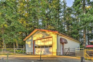 Photo 13: 4520 Markham St in VICTORIA: SW Beaver Lake House for sale (Saanich West)  : MLS®# 798977