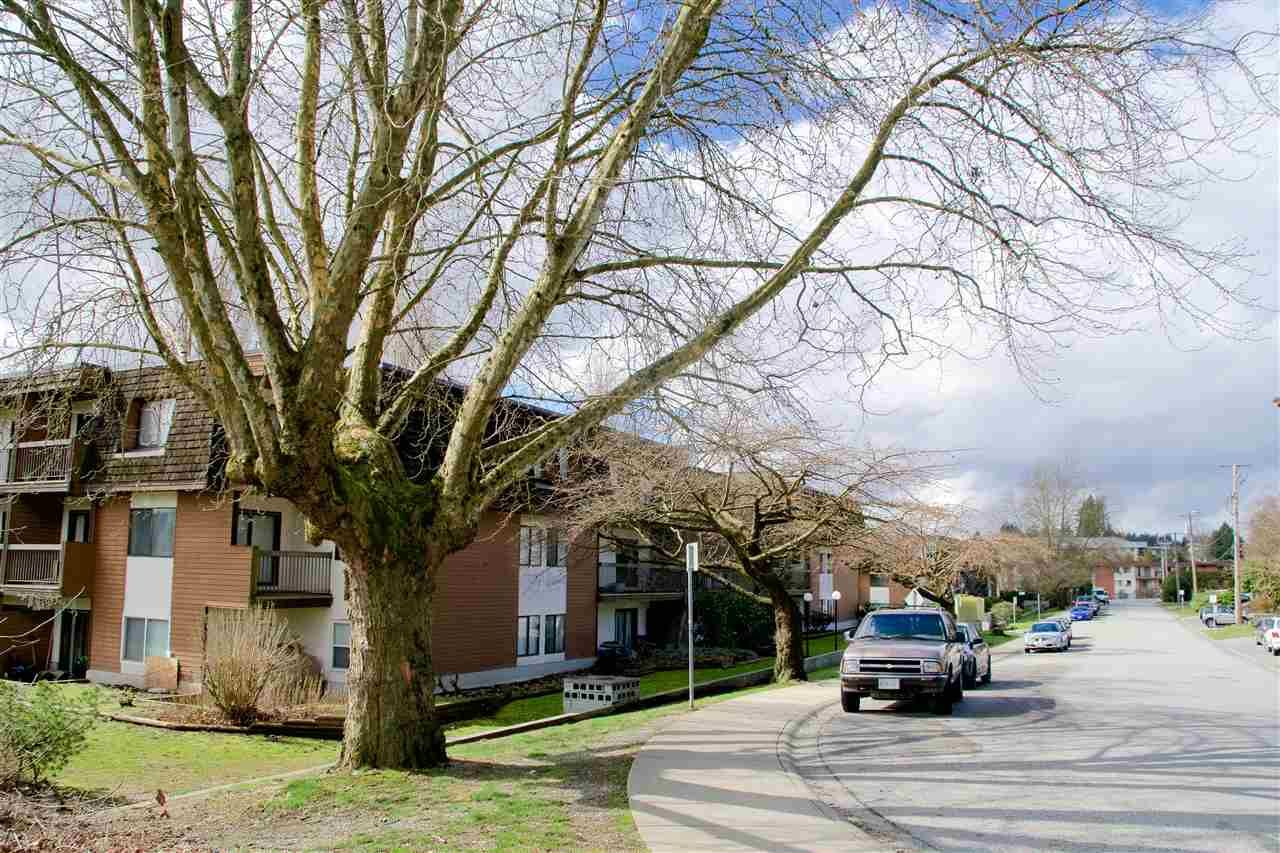 Main Photo: 312 33850 FERN Street in Abbotsford: Central Abbotsford Condo for sale : MLS®# R2494016