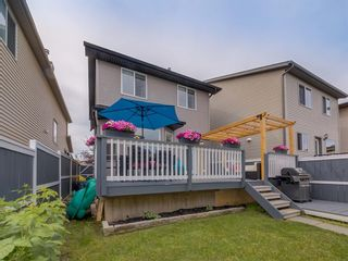 Photo 47: 180 SILVERADO Way SW in Calgary: Silverado Detached for sale : MLS®# A1016012