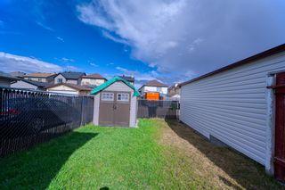 Photo 45: 26 Saddlemont Way NE in Calgary: Saddle Ridge Detached for sale : MLS®# A1103479