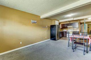 Photo 20: 243 TARACOVE ESTATE Drive NE in Calgary: Taradale Detached for sale : MLS®# C4303627