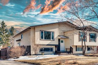 Main Photo: 711 Fonda Court SE in Calgary: Forest Heights Semi Detached for sale : MLS®# A1111911