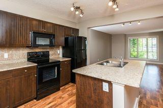 Photo 20: 3814 Allan Drive in Edmonton: Zone 56 Attached Home for sale : MLS®# E4255416