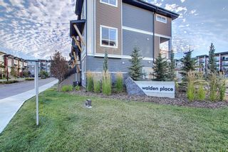 Photo 42: 308 10 WALGROVE Walk SE in Calgary: Walden Apartment for sale : MLS®# A1032904