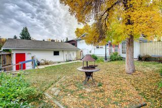 Photo 38: 248 Midlake Boulevard SE in Calgary: Midnapore Detached for sale : MLS®# A1144224