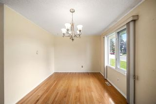 Photo 6: 3320 Dover Ridge Drive SE in Calgary: Dover Detached for sale : MLS®# A1141061