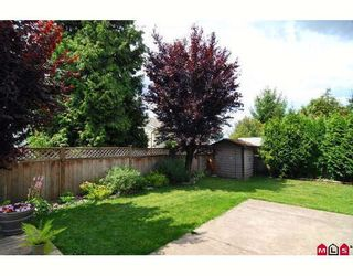 Photo 9: 8875 204A Street in Langley: Walnut Grove House for sale : MLS®# F2915413
