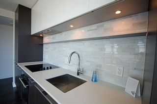 Photo 5: 2808 8131 NUNAVUT Lane in Vancouver West: Marpole Home for sale ()  : MLS®# R2077956
