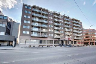 Photo 37: 302 429 14 Street NW in Calgary: Hillhurst Apartment for sale : MLS®# A1075167