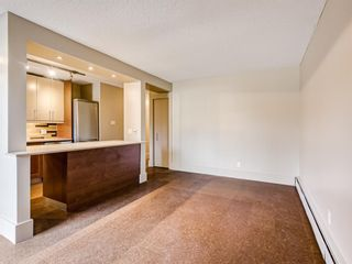 Photo 18: 202 1603 26 Avenue SW in Calgary: South Calgary Apartment for sale : MLS®# A1100163