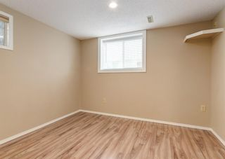 Photo 19: 3135 Rae Crescent SE in Calgary: Albert Park/Radisson Heights Detached for sale : MLS®# A1139656