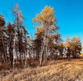 Photo 1: Over 1 acre lots in Hudson Bay: Lot/Land for sale : MLS®# SK850476