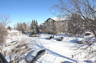 Photo 18: 314 10 Dover Point SE in Calgary: Dover Apartment for sale : MLS®# A1073058