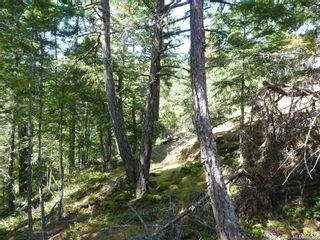 Photo 3: Lot B Mt. Matheson Rd in : Sk East Sooke Land for sale (Sooke)  : MLS®# 866391