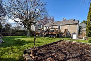 Photo 28: 1235 Basil Ave in : Vi Hillside House for sale (Victoria)  : MLS®# 870766