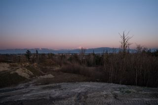 Photo 12: 1720 ROSS Road in Abbotsford: Aberdeen Land for sale : MLS®# R2445453