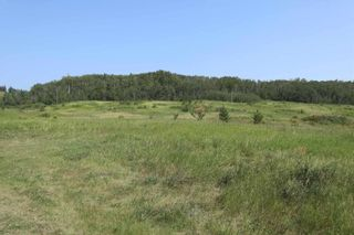Photo 40: 23509 Twp 484: Rural Leduc County House for sale : MLS®# E4258040