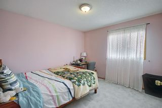 Photo 17: 8230 Saddleridge Drive NE in Calgary: Saddle Ridge Detached for sale : MLS®# A1085120