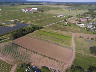 Photo 22: 2969 Highway 1 in Aylesford East: 404-Kings County Farm for sale (Annapolis Valley)  : MLS®# 201919454