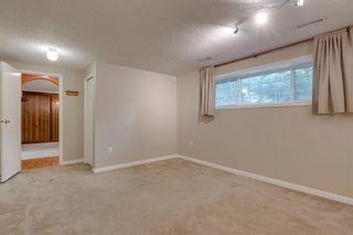 Photo 22: 6807 24 Avenue NE in Calgary: Pineridge Detached for sale : MLS®# C4258740