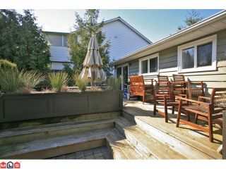 Photo 9: 16310 15TH Avenue in Surrey: King George Corridor House for sale (South Surrey White Rock)  : MLS®# F1209725