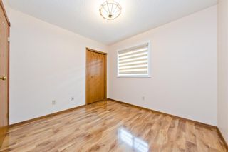 Photo 26: 45 Martinview Crescent NE in Calgary: Martindale Detached for sale : MLS®# A1112618