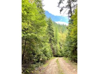 Photo 7: 1969 SANDY ROAD in Castlegar: Vacant Land for sale : MLS®# 2461033