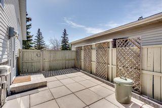 Photo 45: 93 ABERDARE Road NE in Calgary: Abbeydale Detached for sale : MLS®# C4240941