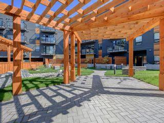 Photo 2: 211 991 McKenzie Ave in Saanich: SE Quadra Condo for sale (Saanich East)  : MLS®# 884337