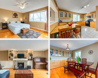 Main Photo: 204 Mchugh Road NE in Calgary: Mayland Heights Detached for sale : MLS®# A1084948