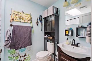 Photo 21: 3162 Alder St in : Vi Mayfair House for sale (Victoria)  : MLS®# 856060