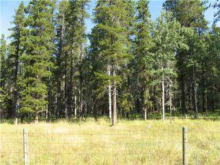 Photo 2: WEST OF BOTTREL in COCHRANE: Rural Rocky View MD Rural Land for sale : MLS®# C3492220