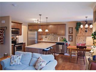 Photo 15: 509 WINDRIDGE Road SW: Airdrie House for sale : MLS®# C4050302