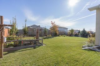 Photo 27: 17 Wheelwright Way in Oak Bluff: RM of MacDonald Residential for sale (R08)  : MLS®# 202025210