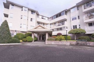 """Photo 1: 108 8725 ELM Drive in Chilliwack: Chilliwack E Young-Yale Condo for sale in """"ELMWOOD TERRACE"""" : MLS®# R2490695"""