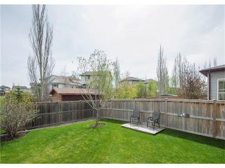 Photo 35: 160 CRANWELL Crescent SE in Calgary: Cranston House for sale : MLS®# C4116607