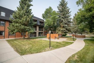 Photo 31: 3101 4001C 49 Street NW in Calgary: Varsity Apartment for sale : MLS®# A1135527