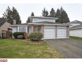Photo 1: 12954 66A Avenue in Surrey: West Newton House for sale : MLS®# F1103031