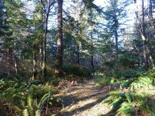Photo 8: Lot 6 Irene Rd in : Isl Quadra Island Land for sale (Islands)  : MLS®# 863545