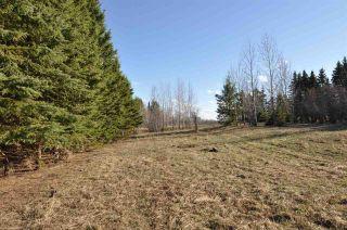 Photo 3: 10 57126 Range Road 12: Rural Barrhead County Rural Land/Vacant Lot for sale : MLS®# E4241768