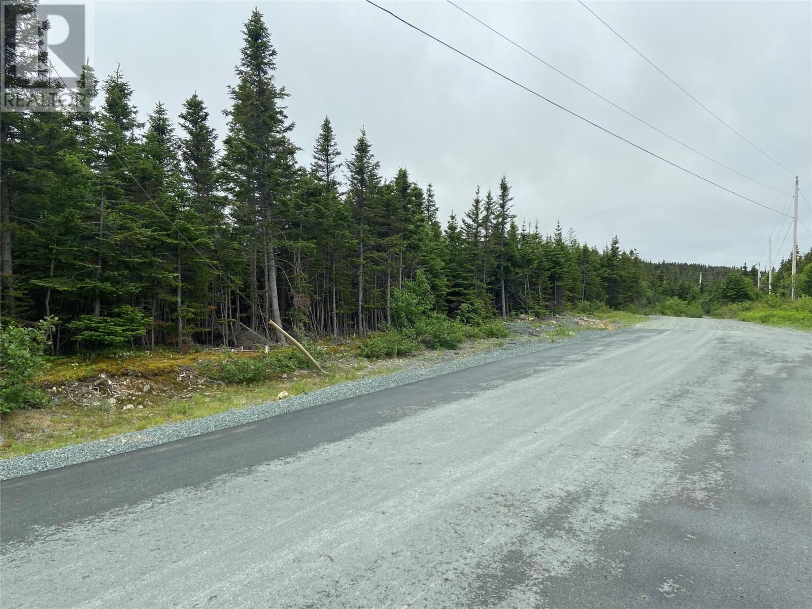 Main Photo: 45-61 Robin's Pond Hill Road in Torbay: Vacant Land for sale : MLS®# 1232583