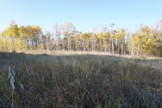Photo 10: 14 53214 RR13: Rural Parkland County Rural Land/Vacant Lot for sale : MLS®# E4266456