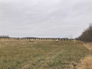 Photo 6: Twp Rd 583 Rge Rd 271: Rural Westlock County Rural Land/Vacant Lot for sale : MLS®# E4218422