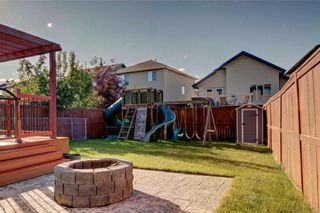 Photo 30: 279 CHAPALINA Terrace SE in Calgary: Chaparral House for sale : MLS®# C4128553