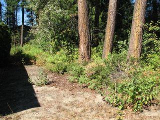 Photo 7: lot 46: Blind Bay Land Only for sale (shuswap)  : MLS®# 10214876
