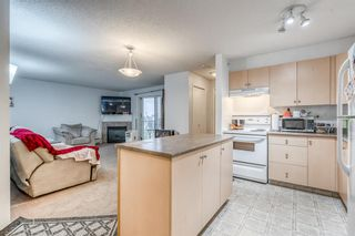 Photo 3: 417 1717 60 Street SE in Calgary: Red Carpet Apartment for sale : MLS®# A1133499