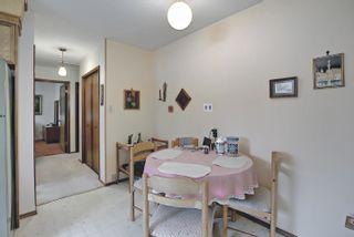 Photo 19: 3708 108 Street in Edmonton: Zone 16 House for sale : MLS®# E4255030