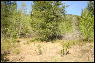 Photo 41: 21 6500 Southwest 15 Avenue in Salmon Arm: Panorama Ranch Vacant Land for sale : MLS®# 10230290